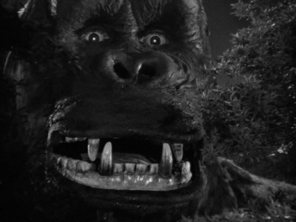 king kong closeup