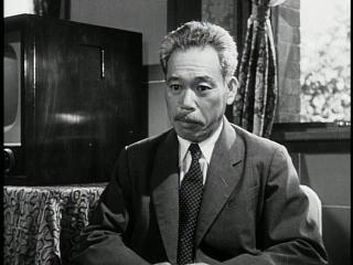 dr. yamane