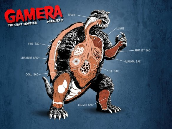 gamera_is_really_neat_full_of_turtle_desktop_1024x768_hd-wallpaper-796747