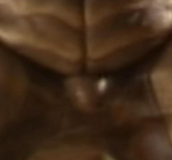 3 zoom 2